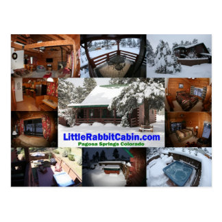 Little Rabbit Cabin Post Card