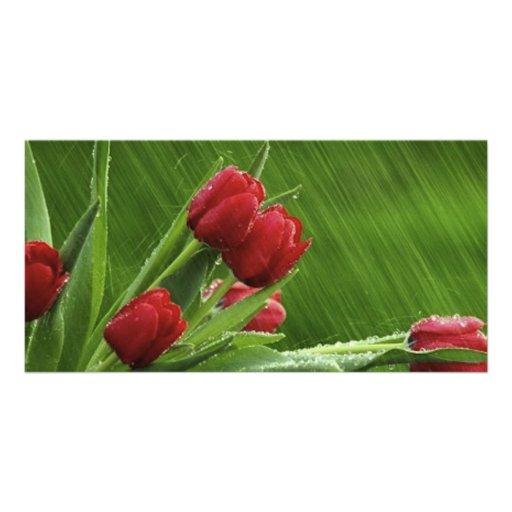 Little_Rain_jpeg Personalized Photo Card