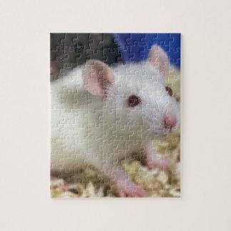 Little rat jigsaw puzzle