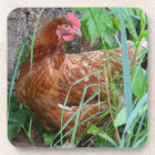 Little Red Hen in the Grass Coaster
