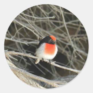 little robin redbreast bird sitting on a twig classic round sticker