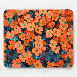 Little Spring Orange Flowers Mouse Pad