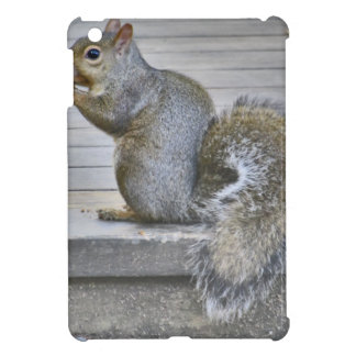 Little Squirrel Eat While You Can iPad Mini Cases
