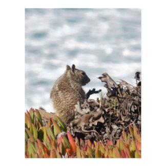 Little squirrel letterhead
