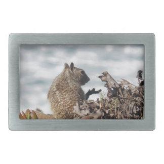Little squirrel rectangular belt buckle