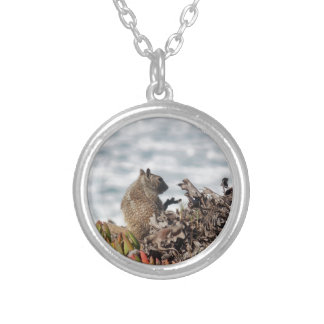 Little squirrel silver plated necklace