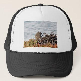 Little squirrel trucker hat