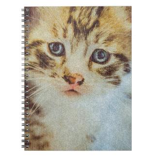 Little Tabby Kitten Grunge Portrait Note Books