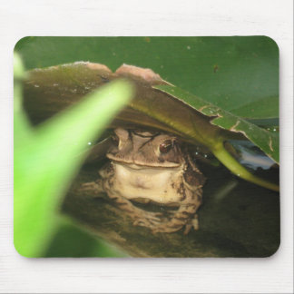 Little Toad Frog Mouse Pad