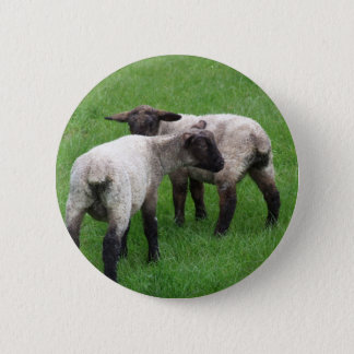 Little Twin Lambs 2 Inch Round Button