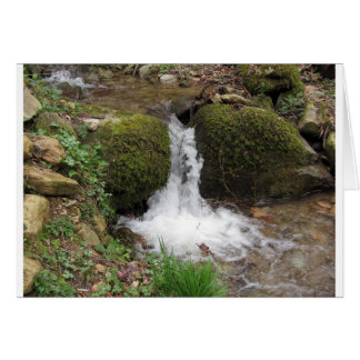 Little waterfall by mossy rocks in the forest card