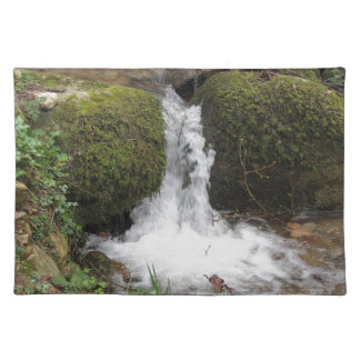 Little waterfall by mossy rocks in the forest placemat