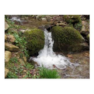 Little waterfall by mossy rocks in the forest postcard