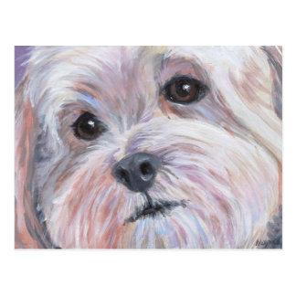Little White Dog Card