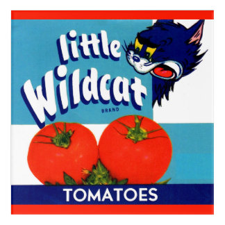 Little Wildcat tomatoes crate label Acrylic Wall Art