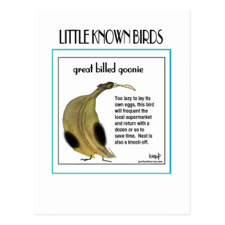 LittleKnownBirds-2 card