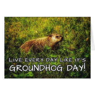 Live every day like it's Groundhog Day! card