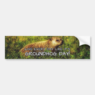 Live every day like it's Groundhog Day! sticker