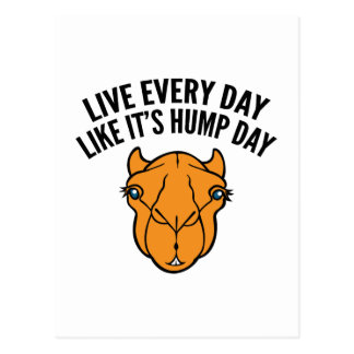 Live Every Day Like It's Hump Day Post Card