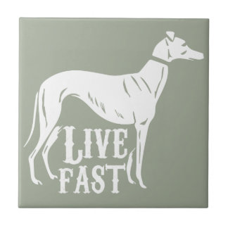 Live Fast Tiles