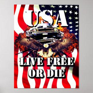 Live Free Or Die Patriotic American Poster