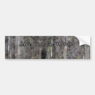 Live from the Woods! Bumper Sticker