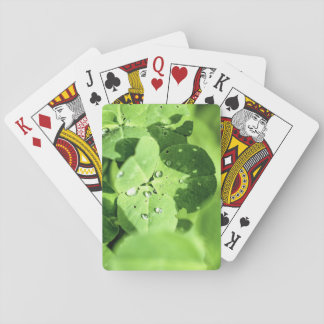 Live In Clover Playing Cards
