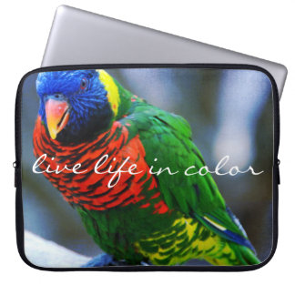 """Live in Color"" Quote Red Blue & Green Bird Photo Laptop Sleeve"