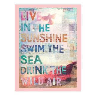Live in the Sunshine Postcard