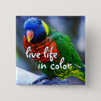 """""""Live life in color"""" red blue green bird photo 2 Inch Square Button"""