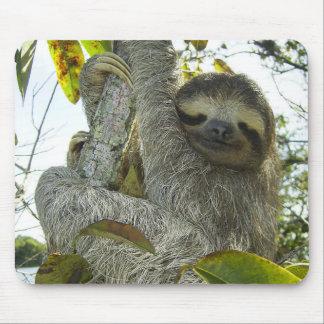Live Life Like a Sloth Mouse Pad