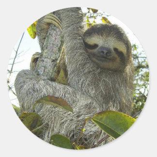 Live Life Like a Sloth Round Sticker