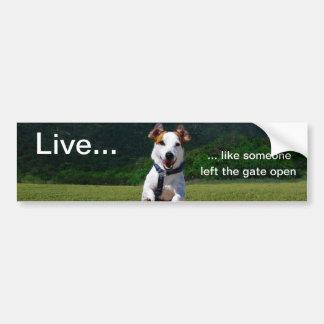 Live Like Someone Left Gate Open Bumper Sticker
