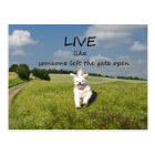 """""""Live Like Someone Left the Gate Open"""" Postcard"""