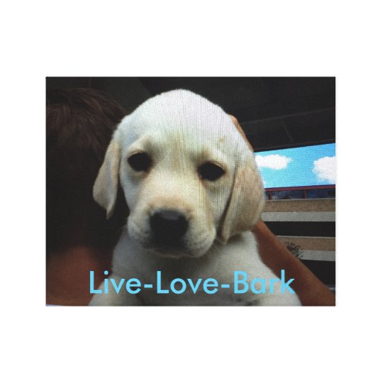 Live - Love - Bark Canvas Print