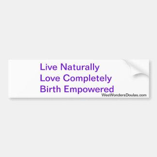 Live, Love, Birth Bumper Sticker