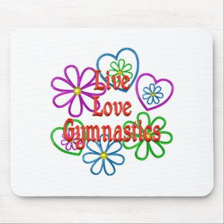 Live Love Gymnastics Mouse Pad