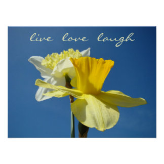 Live Love Laugh Decorative art Spring Daffodils Poster