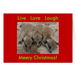 Live Love Laugh - Meerkat Holidays Card