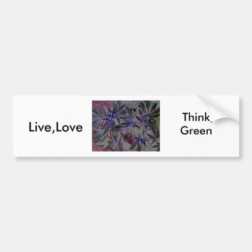 Live,Love,  Think, Green Bumper Stickers