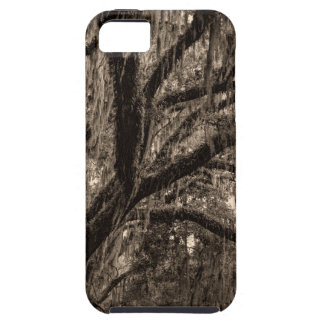 Live Oak and Spanish Moss in Sepia Tones iPhone 5 Covers