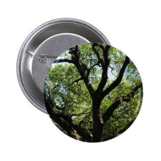 Live Oak In Downtown Savannah 2 Inch Round Button
