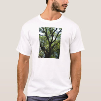 Live Oak In Downtown Savannah T-Shirt