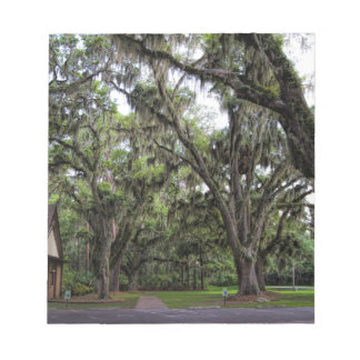 Live Oak Tree With Spanish Moss Notepad