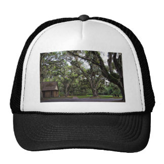 Live Oak Tree With Spanish Moss Trucker Hat