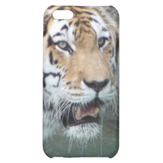 Live tiger cover for iPhone 5C