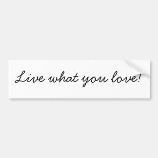Live What You Love Bumper Sticker