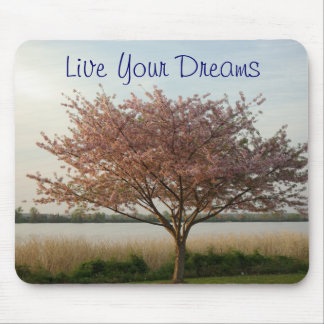 Live Your Dreams Mousepad