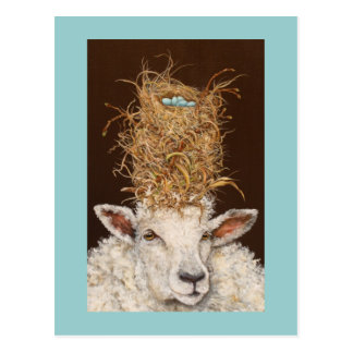 Livin' High on the Sheep postcard