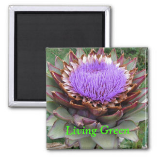 Living Green Square Magnet